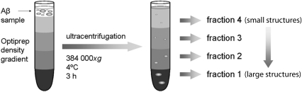 Density gradient ultracentrifugation.Schematic picture | Open-i