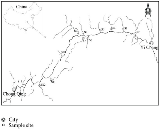 Map of the study area and sampling sites in TGR.