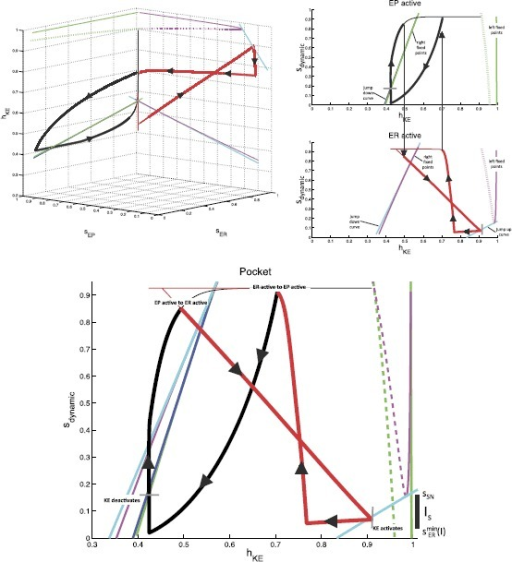 Phase space views for the KE dynamics in the reduced module shown in Fig. 7 during the pocket rhythm. Top left: full three-dimensional slow phase space. Top right: projections onto the two two-dimensional planes where the trajectory lies. Bottom: single, combined two-dimensional representation. In all plots, black and red curves are projections of parts or all of the trajectory of a periodic pocket scratch solution, with bold black and thin red denoting times when EP is active and bold red and thin black times when ER is active. Green curves denote the fixed point curves for KE (stable, solid),  (unstable, dashed), and  (stable, solid) (in order of increasing ) while EP is active. Magenta curves denote the analogous curves of fixed points for KE while ER is active. The dark blue curve is the curve of jump down knees for KE while EP is active; cyan curves are jump down knees and jump up knees (larger  values) for KE while ER is active. Finally, dashed black curves in the top right indicate points on the two projections that correspond to the same times, when the switches between the EP active phase and the ER active phase occur. Additional labeling on the top right indicates relevant structures defined above. Additional labeling on the bottom indicates key changes in activity of various populations throughout the rhythms. Gray tick marks indicate transitions from activity to silence. This labeling holds for all panels and future figures