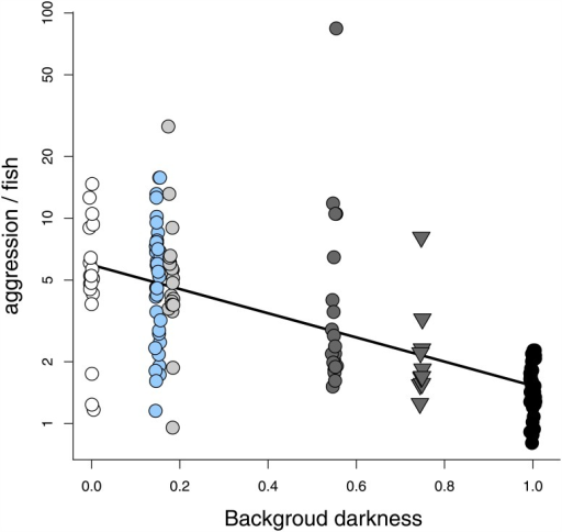 Dark backgrounds decrease aggression.Average aggression (the total number of aggressive acts displayed divided by the average number of fish across a 10-min trial) on a side (log scale) decreased with background darkness (p < 0.0001). Background darkness ranges from 0 (white) to 1 (black). Filled-in circle (◯) colour corresponds to the background colour (white, blue, light grey, dark grey, or black) and the triangle (▿) indicates the patterned background.