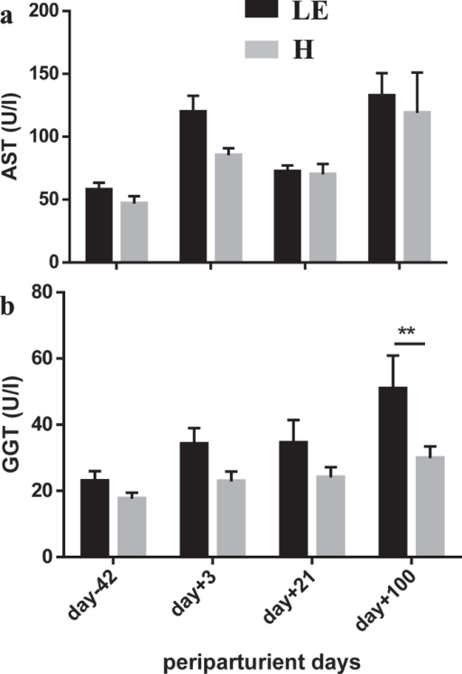 Liver enzymes in healthy (H) and left productive life early (LE) cows.Serum aspartate transaminase (AST) (a) and gamma glutamyl transferase (GGT) (b) activity in cows that left productive life early (LE, black bars, n = 8) or were healthy (H, grey bars, n = 11) as influenced by parturition and onset of lactation. Given were means ± SEM; **p < 0.01. Results of Two-Way ANOVA and Sidak's multi comparison posttest (Graphpad.prism version 6.0) demonstrate effects of time and grouping and point out interactions between them (results see Table 3 below).