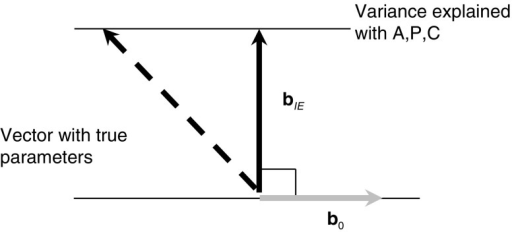 The IE constraint, with b0 (grey line), bIE (solid line), and a possible vector with the set of parameters that generated the data (dashed line)
