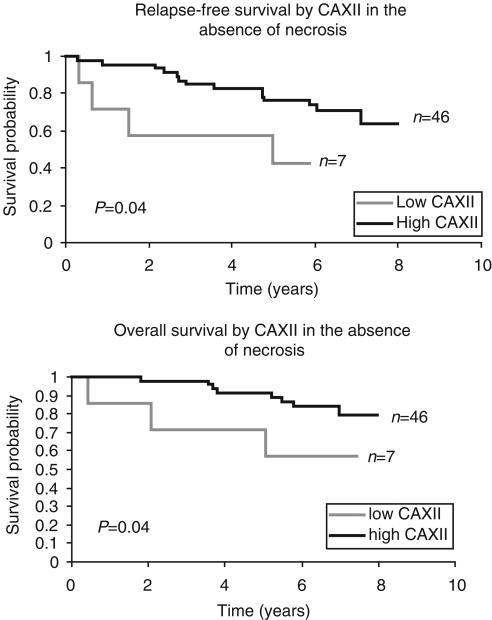 Kaplan – Meier curves demonstrating an association of CA XII with outcome within subgroups of tumours with and without necrosis.
