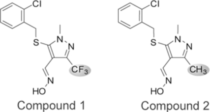 Compound 1, a synthetic 3-trifluoromethyl-N-methylpyrazole, MW=349.76, inhibits cellular iNOS activity. Compound 2, 3-methyl-N-methylpyrazole, MW=295.79, a structural analog of Compound 1, is inactive in cellular iNOS inhibition assays.