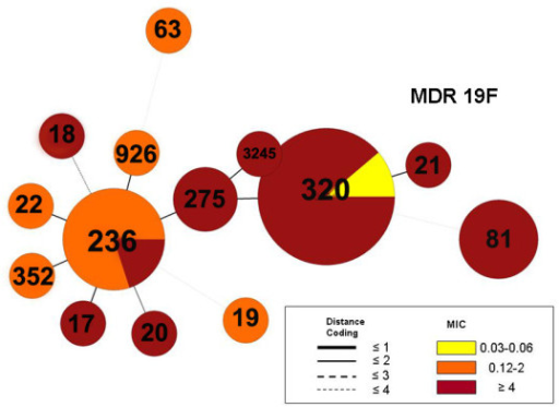 Minimum spanning tree of multi-drug resistant MDR 19F isolates (n = 29) from the pre-PCV7 era using BioNumerics software. A categorical clustering was performed based on multi-locus sequence type (MLST). Sequence types sharing the maximum number of single-locus variants were connected first. Each circle represents a sequence type (ST) the size of which is proportional to the number of isolates within that particular ST. Colors within circles indicate the minimum inhibitory concentration (MIC) ranges for penicillin. Relationships between the STs are depicted by the lines connecting the STs and the relative lengths of the branches linking them. Distance coding enumerates the number of differences at a given MLST locus. A distance coding of greater than 2 implies a different clonal complex. Angles of the line connections and the overlapping circles have no significance.