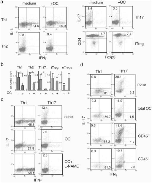 Suppression of effector but not regulatory T cells by omentum cells.(a) Immunosuppressive functions of omentum cells on effector T cells. Naïve CD4+ T cells were induced to differentiate into Th1, Th2, Th17, or iTregs. 5 days after induction, omentum cells were added to each group of cells. T cells were maintained further with the same culture medium for 2 days, harvested, and were stimulated with PMA and ionomycin for 4 hours to induce cytokine production. (b) Cells were cultured with (+) or without (−) omentum cells and treated as in (a). Cell numbers that are expressing IFNγ, IL-4, IL-17, or Foxp3 were determined after intracellular cytokine stain. For nTregs, CD4+CD25+ from spleen were expanded prior to co-culture for 2 weeks, then cultured with omentum cells for 2 days. (c) Effect of iNOS inhibitor on Th1 and Th17 inhibition by omentum cells. Differentiated Th1 or Th17 cells were cultured with omentum cells in the presence/absence of an iNOS inhibitor for 2 days as in (a). (d) Omentum cells were sorted into CD45− and CD45+ cells, then co-cultured with CD4+T cell differentiated into Th1 (upper panels) or Th17 (lower panels) cells for 5 days. After 2 days of co-culture, cells were harvested and cytokine profiles were determined as in (a).