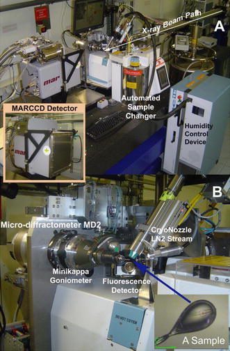 X-ray data collection facility. a End-station instrumentation at ESRF beamline BM14 (http://www.bm14.eu) illustrating the sample changer used to exchange cryo-frozen crystals on the goniometer and the MARCCD (Marresearch GmbH) detector used to collect diffraction images. The arrow highlights the path of the X-ray beam. b Close-up view showing the frozen crystal sample in the center of the image and the surrounding beamline instrumentation. The red cross and blue circle represent the center and diameter of the X-ray beam on the frozen crystal sample (bottom right)