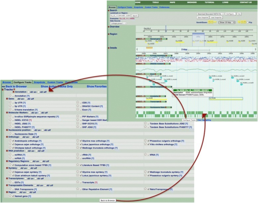 Typical display of the chickpea genome browser in the region of the first LG. Four main areas can be seen on the top left side of the upper panel panel, namely, Search, Overview, Region and Details. The topmost 'Search' section identifies the exact genomic range displayed in the browser (see 'Landmark' textbox on top left corner). The area highlighted in sky-blue shades in both of next two sections, namely, 'Overview' and 'Region', is expanded in the remaining browser view. Accordingly, the current example ('Details' section) represents a 10 kbp stretch within 3 Mbp region of CA LG 1. The 3 Mbp region has about 11 gene models (see yellow bands in 'Region' Section), of which only two lie within the expanded Details section (see yellow bands in Annotation track). Annotation of the gene models can be seen by clicking the annotation bands in the expanded section, in the form of a pop-up box, as shown here. In this image, seven genomic tracks have been toggled on, including retrotransposons, nucleosome states, and the transcriptome. Users can select additional tracks from over forty-eight options in the present CGWR build, as shown in the lower left panel.