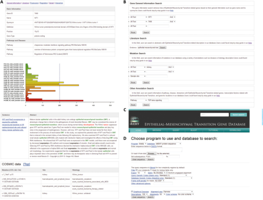 Web interface of dbEMT.(A) The basic information in each EMT-related gene page; (B) Query interface for text search; (C) BLAST search interface for comparing query against all sequences in dbEMT; (D) Browser interface for genes in top 10 enriched pathways, top 10 enriched diseases and shared cytobands.