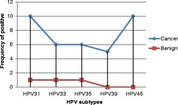 Description of HPV subtypes by Lesion type