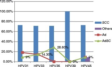 Description of cervical cancer type by HPV subtype