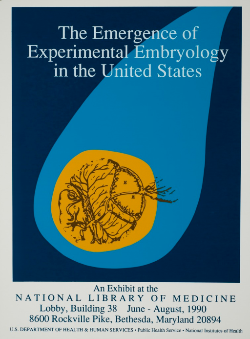<p>Poster with shades of blue in the background and an image representing embryonic developmnet in the center.</p>