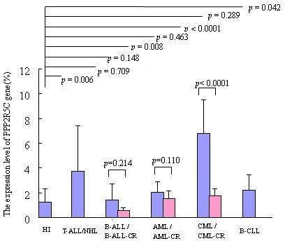 Expression level of PPP2R5C in human leukemic cell line. A: T-cell lines and healthy CD3+ T cells, B: Myeloid cell lines and B cell lines and PBMCs from healthy individuals.
