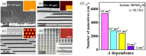 SEM images of Bi nanowires grown on Bi films with different areas: (a) (104 μm)2, (b) (103 μm)2, (c) (102 μm)2, and (d) (10 μm)2. Insets show optical microscope images of the samples before annealing. (e) Histograms of Bi nanowire densities depending on the Bi film areas.