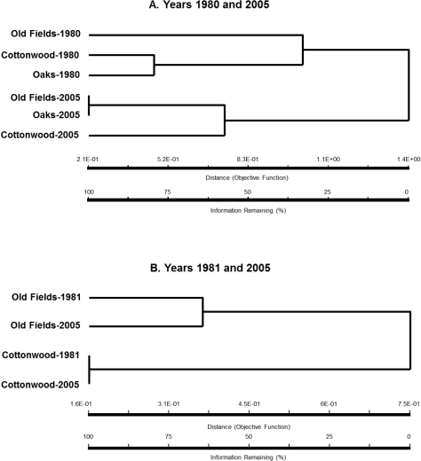 Dendrogram for the similarity/dissimilarity in standardized per trap catches of epigaeic beetle assemblages in sampling years 1980 and 2005 (A) and 1981 and 2005 (B) in cottonwood and oak stands, and old fields.