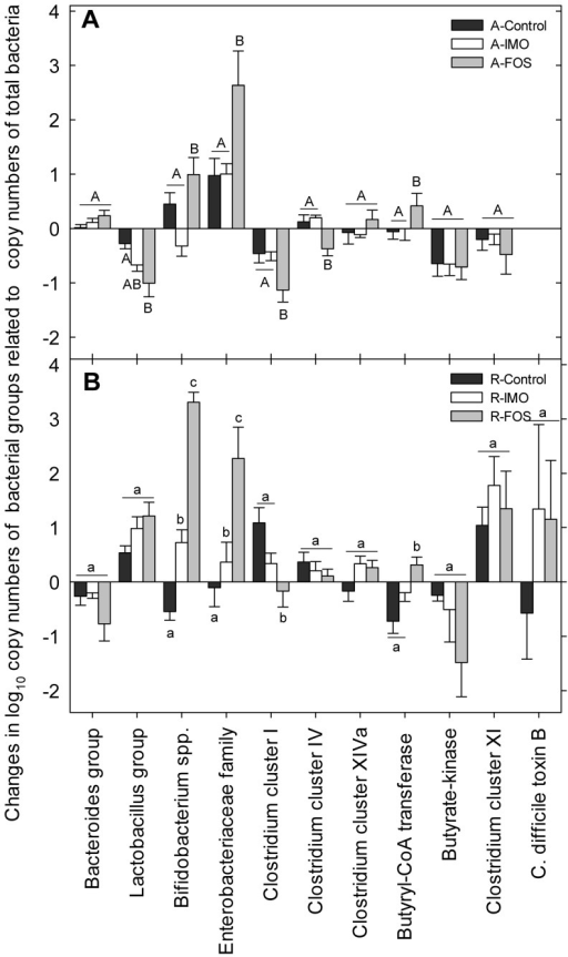 Effects of diets and fibres on fecal bacterial composition.Changes of fecal bacterial composition (week 16 – week 4) in HLA-B27 transgenic rats was evaluated by qPCR. AIN-76A diet is shown in panel A, whereas panel B depicts the results for rat chow diet. Vertical bars represent means and standard error of the mean. Values obtained with the same primer pair that do not share a common superscript are significantly different (P<0.05, Bonferroni adjustment).
