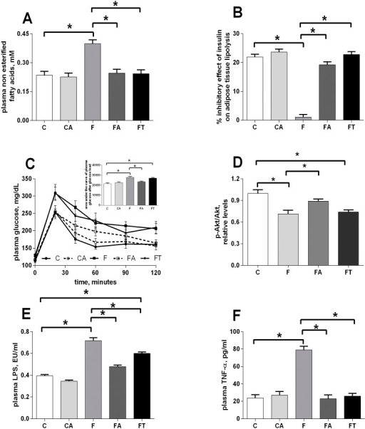 Antibiotics or faecal samples reduce markers of the fructose-induced metabolic syndrome.Plasma NEFA (A) and inhibitory effect of insulin on lipolysis in epididymal WAT (B) were assessed as first markers of metabolic syndrome. Changes in plasma glucose after the administration of a given dose of glucose were plotted over the time (C) and the area under the curves was calculated and used to estimate glucose tolerance (inset in panel C), while the contribution of skeletal muscle to changes in glucose tolerance was estimated by measuring the degree of phosphorylation of the kinase Akt, a distal effector of insulin signalling in this tissue (D). As a third marker of the development of a metabolic syndrome, the plasma concentration of LPS (E) and TNF-alpha (F) were considered. Values obtained in control (C), control+antibiotic (CA), fructose-fed (F), fructose-fed+antibiotic (FA) and fructose-fed+faecal samples (FT) rats are reported as means±SEM of six different rats. * P< .05 (one-way ANOVA followed by Tukey post-test). EU = endotoxin unit.