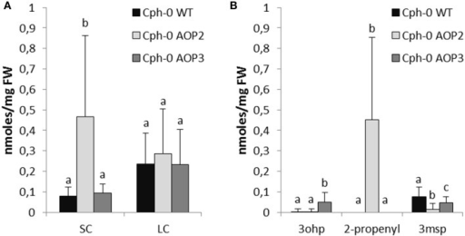 Effects of AOP2 and AOP3 on glucosinolate accumulation in Cph-0. Glucosinolate concentrations in leaves of Cph-0 WT including empty vector controls (black), n = 104, Cph-0 AOP2 (light gray), n = 73 (3 independent insertion lines), and Cph-0 AOP3 (dark gray), n = 60 (3 independent insertion lines), as (A) Total SC and LC, and (B) The C3 substrate and products. Means (+ standard deviations) are shown for analysis of two experimental repeats of the lines. Nested ANOVA across independent lines and post testing was used for statistical analysis. Letters indicate significant differences (P < 0.05) between genotypes.