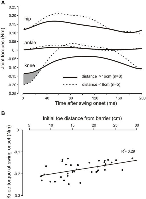 The knee torque at the beginning of swing increases with shorter initial toe distance from the barrier. (A) Averaged torque profiles hip, knee, and ankle joints for the first 200 ms of the swing phase for long (solid lines) and short (dashed lines) initial toe-to-barrier positions. Note the knee torque is larger for shorter distances for approximately the first 30 ms of swing (shaded area), whereas the initial torques at the ankle and hip joints are very similar at swing onset for both conditions. Knee flexion torques are negative for the geometry of the leg used in the inverse dynamic analysis, while hip and ankle flexion torques are positive. (B) Scatter plot of data from another animal showing the increase in the knee torque at swing onset with decreasing toe-to-barrier distance.