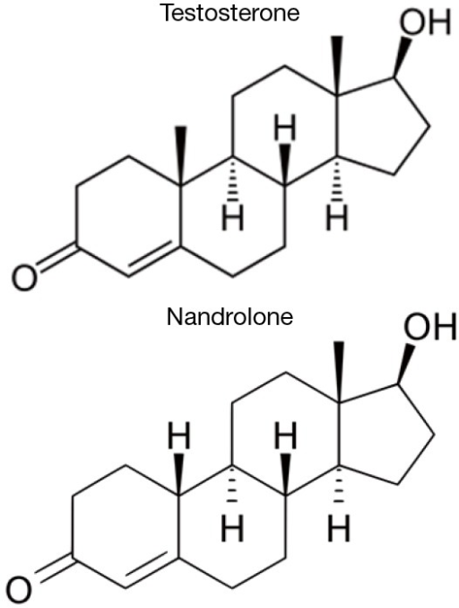 Comparison of molecular structures of testosterone and 19-nortestosterone (nandrolone).