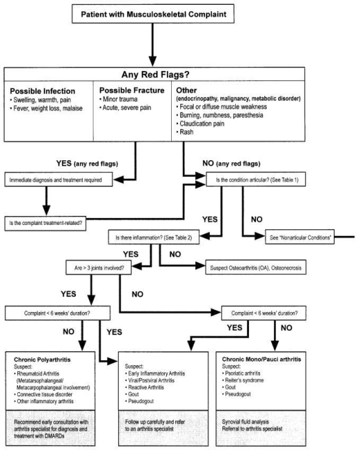 Algorithm for assessment of musculoskeletal complaints (adapted25,28,29).
