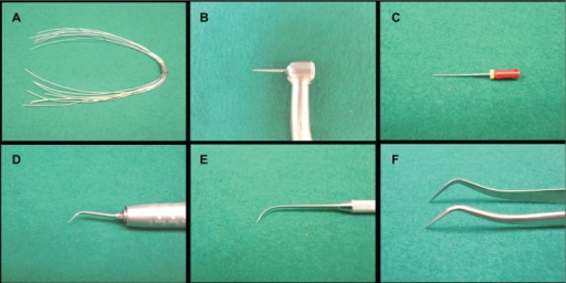 Typical sharp instruments. A) Stainless steel wires (0.4 mm in diameter). B) Dental turbine hand piece with diamond bur. C) File. D) Ultrasonic hand scalar with scalar tip. E) Explorer. F) Dental forceps.