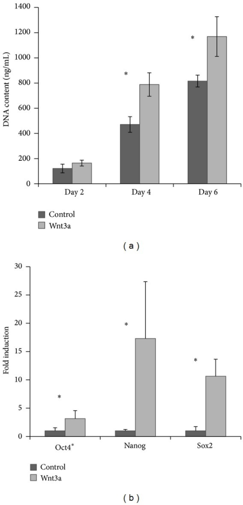 Representative results showed Wnt3a promoted proliferation and self-renewal ability of hPDLCs. (a) Wnt3a-treated cells displayed a significant increase in DNA content compared to untreated cells cultured in proliferation medium. (b) Wnt3a-treated cells exhibited a higher expression of Oct4, Nanog, and Sox2 after 5 days of culture. *P < 0.05; error bars represent standard deviation.