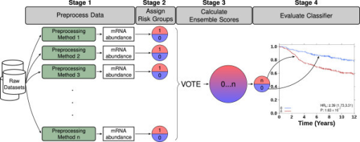 Experimental design. Outline of the experimental design for ensemble classification and evaluation of a biomarker. Microarray data is pre-processed in 24 different ways to calculate mRNA abundance levels (Stage 1). Risk groups are subsequently assigned for the evaluated biomarker (Stage 2). Each of the resulting classifications represents a vote for whether the patient is in the low or the high risk group. The ensemble score is a summation over these individual classifications and ranges from 0 to 24 (Stage 3). Only unanimously classified patients (ensemble scores 0 and 24) are considered robust and are evaluated with Cox proportional hazard ratio modeling and Kaplan-Meier survival curves (Stage 4).