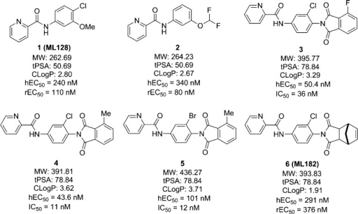 Representative mGlu4 PAMs from N-phenyl-2-picolinamidesand the corresponding phthalimide derivatives.