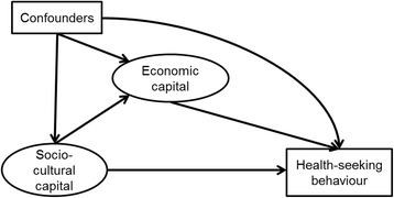 Conceptual path diagram of the structural model.