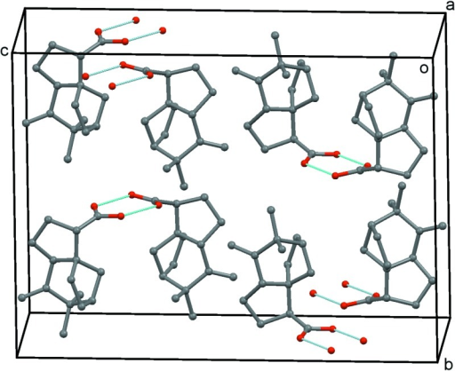 Crystal packing in the structure with H atoms omitted and hydrogen bonds shown as dotted lines.