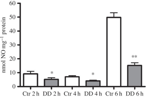 Decadienal (DD) induces a reduction in NO levels. Larvae treated with 0.5 µg ml−1 DD were harvested after 2, 4 and 6 h of treatment and processed for DAN assay. Results are representative of three independent experiments. Data are expressed as means ± s.e.m. and assessed by unpaired t-test. Asterisks represent significant differences with respect to the control: *p < 0.05, **p < 0.01.