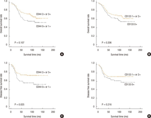 Overall survival rate as a function of the survival time for CD44 (A) and CD133 (B) expressions, and disease-free survival rate as a function of survival time for CD44 (C) and CD 133 (D) expressions.