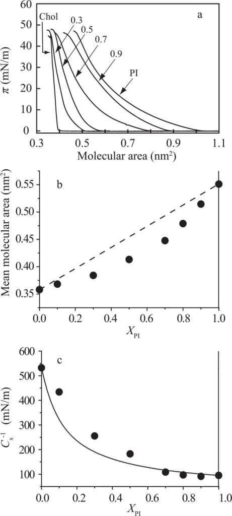 Intermolecular interaction in the PI/Chol monolayer system. (a) π–A isotherms of pure PI, pure Chol and PI/Chol mixed monolayers on the water subphase at 25±0.1°C. The molar fractions of PI, XPI, are indicated in the figure; 0 (Chol), 0.3, 0.5, 0.7, 0.9 and 1.0 (PI). (b) Mean molecular area versus composition analysis at 30 mN/m. The dotted line represents area additivity (Eq. (1)). (c) Areal compressional modulus () versus composition analysis. The  values at 30 mN/m were calculated from equation (4). The solid line represents ideal additivity of compressibility (see Materials and methods and Eq. (5)).