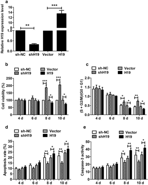 The effect of H19 knockdown and H19 overexpression on P19CL6 cell proliferation and apoptosis. a Transfecting P19CL6 cells with shH19 and pcDNA-H19 efficiently down- and up-regulated the H19 level at day 10, respectively. b CCK-8 assay showed that shH19 resulted in an increase in cell viability at day 8 and 10, whereas pcDNA-H19 had an opposite effect. c Flow cytometry suggested that shH19 significantly increased the cell number in S phase at day 8 and 10, and pcDNA-H19 significantly decreased the cell number. d shH19 significantly reduced the apoptotic rate of P19CL6 cells at day 8 and day 10, whereas pcDNA-H19 had an opposite effect. e Caspase-3 assay indicated that the activity of caspase-3 was significantly reduced in P19CL6 cells transfected with shH19 and significantly increased in cells transfected with pcDNA-H19. *P < 0.05, **P < 0.01, ***P < 0.001