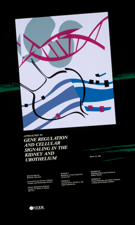 <p>An abstract drawing depicting the title of the poster which includes the DNA double helix.</p>