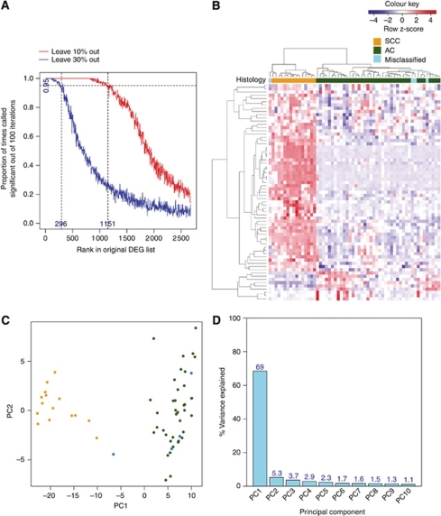 A refined gene signature accurately partitions the NSCLC samples into histological subtypes. (A) Proportion of times the 2673 differentially expressed probesets appear as significant in 100 jackknifed data sets (with 10% and 30% of the samples removed) against rank in the original data set. (B) Hierarchical clustering of the 296 stable probesets on the 58 NSCLC samples. Genes and samples were clustered based on Pearson's correlation. The scaled expression of each probeset, denoted as the row Z-score, is plotted in red–blue colour scale with red indicating high expression and blue indicating low expression. The coloured bar above the heatmap indicates the histological classification: orange=SCC; green=AC; blue=misclassified samples. (C) Principal component analysis of the 296 stable probesets when applied to the NSCLC data set. The numbers represent the patient IDs. Different colours are used to represent the different histological subtypes: orange=SCC; green=AC; blue=misclassified samples. (D) Percentage variance explained by the first 10 principal components.