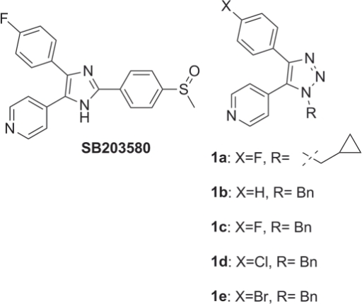 p38 kinase inhibitors.SB 203580 is a pyridinyl imidazole inhibitor of p38 MAPK that                        specifically blocks its kinase activity and is widely used as a research                        tool. Compounds 1a–1e were recently                        described as p38α inhibitors.