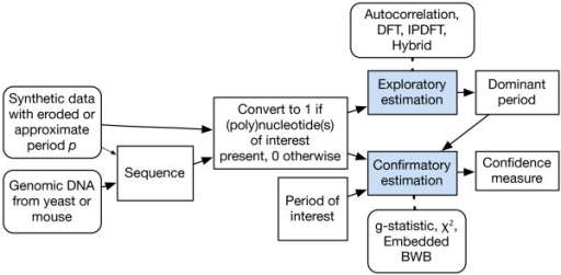 Overview of methods for estimating periodic signals from sequence data. In this work, both synthetic and real data are employed after a symbolic to numeric conversion. The smaller arrow connecting Synthetic data with Sequence represents a possible connection but in this study we directly synthesized the numeric data. The methods applied to exploratory or confirmatory period estimation are indicated above these elements. The embedded blockwise bootstrap (BWB) methods are embedded Autocorrelation, embedded Hybrid and embedded integer period discrete Fourier transform (IPDFT).