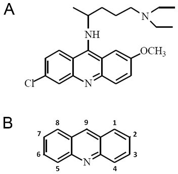 Structures of acridine and the acridine family member quinacrine. (A) Chemical structure of the acridine family member quinacrine. (B) Chemical structure of acridine.
