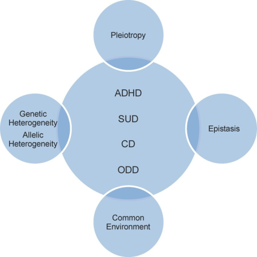 Physiopathological and psychopathological mechanisms, and genetic factors shared by attention deficit hyperactivity disorder (ADHD), conduct disorder (CD), oppositional defiant disorder (ODD) and substance-use disorder (SUD)