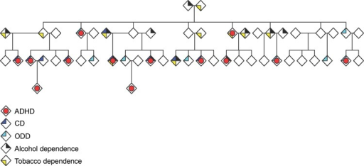 An extended pedigree demonstrating ADHD, externalizing symptoms, and associated conditions including nicotine, dependence and alcohol abuse and/or dependence. With modifications from Palacio et al. (2004)
