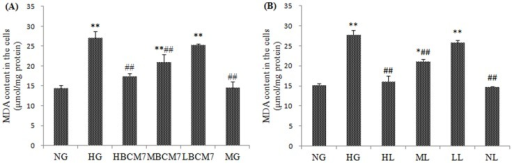 Content of MDA in the NRK-52E cells (n = 4).NG(normal glucose), HG(high glucose), HM(5.5 mmol/L glucose plus 24.5 mmol/L mannitol), HBCM7(high glucose plus 10−5 mol/L β-casomorphin-7),MBCM7(high glucose plus 10−7 mol/L β-casomorphin-7),LBCM7(high glucose plus 10−9 mol/L β-casomorphin-7), HL(high glucose plus 10−4 mol/L losartan), ML(high glucose plus 10−5 mol/L losartan), LL(high glucose plus 10−6 mol/L losartan), NL(normal glucose plus 10−4 mol/L losartan). Data are mean ± SEM (n = 4 for each group). *P<0.05, **P<0.01 compared with NG, #P<0.05, ##P<0.01 compared with HG.