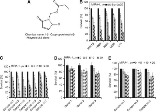 MIRA-1 demonstrated potent anti-myeloma activity in vitro. (A) Chemical structures of MIRA-1; Chemical name: 1-[(1-Oxopropoxy)methyl]-1H-pyrrole-2,5-dione. Molecular formula: C8H9NO4 (B–E). (B) MM cell lines expressing wild-type p53 (MM.1S, H929) or mutant p53 (LP1, U266, and 8226) were incubated with MIRA-1 (0–20 μmol l−1), and viability was determined at 48 h using MTT assay. (C) MIRA-1-induced cytotoxicity in primary MM samples from newly diagnosed MM patients. Myeloma cells isolated from the bone marrow via CD138+ selection were cultured with MIRA-1 (0–20 μmol l−1), and viability was assessed by MTT at 48 h. (D) PBMCs and (E) BMMNCs were treated similarly with MIRA-1 and cyototoxicity was assessed by MTT assay. Viability of the cells was expressed as percentage of the DMSO-treated control. Data represents means (±s.d.) of triplicate cultures.