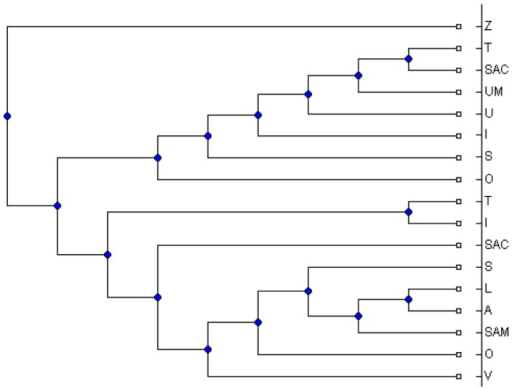 The obtained MUL tree by applying MTRT on the triplets extracted from the MUL tree shown in Figure 5.This MUL tree has 5 duplications.