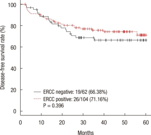 Five-year disease-free survival rate of all the patients. ERCC, excision repair cross-complementation.