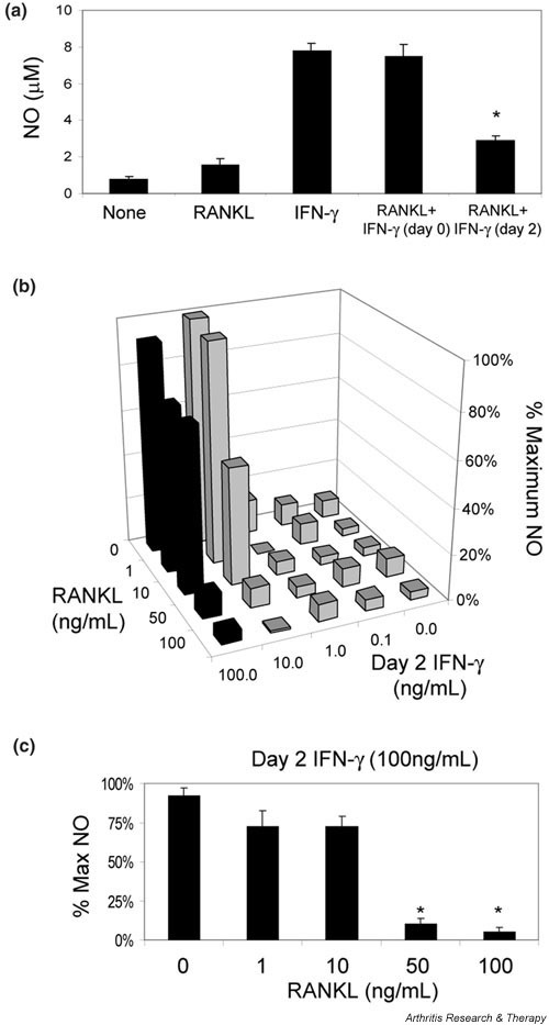 Receptor-activator of NFκB ligand (RANKL) pretreatment impairs IFN-γ-induced nitric oxide (NO) production in a dose-dependent manner. (a) RAW cells were treated as in Figure 2a, and supernatants assayed for NO production on day 4. NO production was significantly inhibited by pretreatment with RANKL (*P < 0.01 versus the IFN-γ only group). (b) RAW cells were grown in the presence of various doses of RANKL, then supplemented with various doses of IFN-γ and maximal GST-RANKL (200 ng/ml) on day 2. NO was assayed on day4. Black bars indicate cells treated on day 2 with 100 ng/ml IFN-γ. (c) This group (indicated by black bars) with statistics. Inhibition of NO production by RANKL pretreatment is dose dependent, with more inhibition with higher doses of RANKL (*P < 0.05 versus 0 ng/ml RANKL).