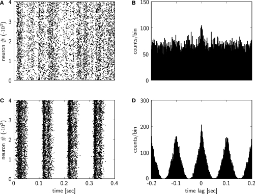 "Plots from the output analysis example with the pypcsimplus package.  (A) Spike response of the spiking network implemented in the Section ""Custom Network Elements"", with input neurons emitting spikes generated from a homogeneous Poisson process with a rate of 5 Hz, for the first 0.4 s of the simulation. (B) Cross-correlogram of the spike response of the network model from (A). (C) Spike response of the spiking network implemented in the Section ""Custom Network Elements"", when the input neurons emit spikes generated from an inhomogeneous Poisson process with a rate changing according to a sinusoidal function (see text for details). (D) Cross-correlogram of the spike response of the network model from (C)."