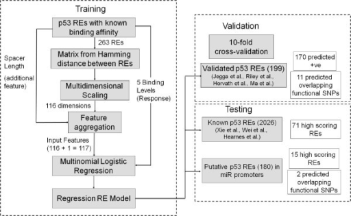 flow chart for training validating and testing logist open i