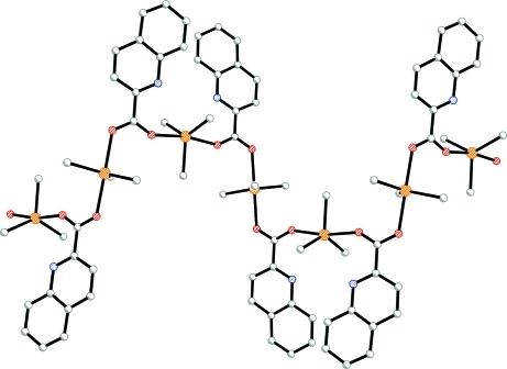 The extended chain structure of with H atoms omitted for clarity.